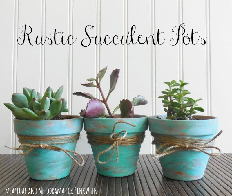 Rustic Succulent Pots: These 50 Cheap & Easy Farmhouse Decor Ideas will help you save money and transform your space.
