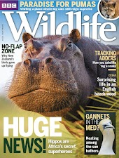 BBC Wildlife Magazine