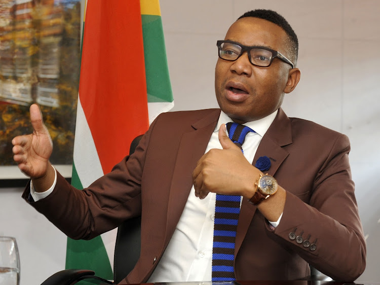 Former deputy minister of education and convicted women basher Mduduzi Manana.