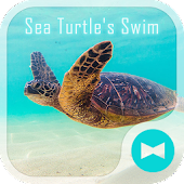 Sea Turtle's Swim +HOME Theme