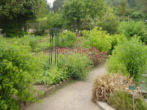 Photo: There is a large botanical garden area with many types of plants carefully arranged.