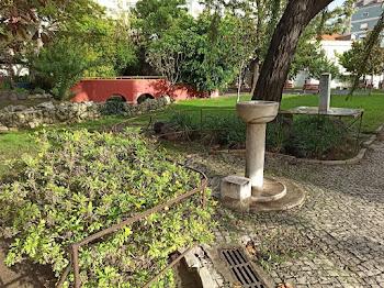 Jardim Da Paz (Jardim Maria Lourdes Pintassilgo)
