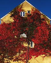 Photo: Carolinenundsvej, Horsens