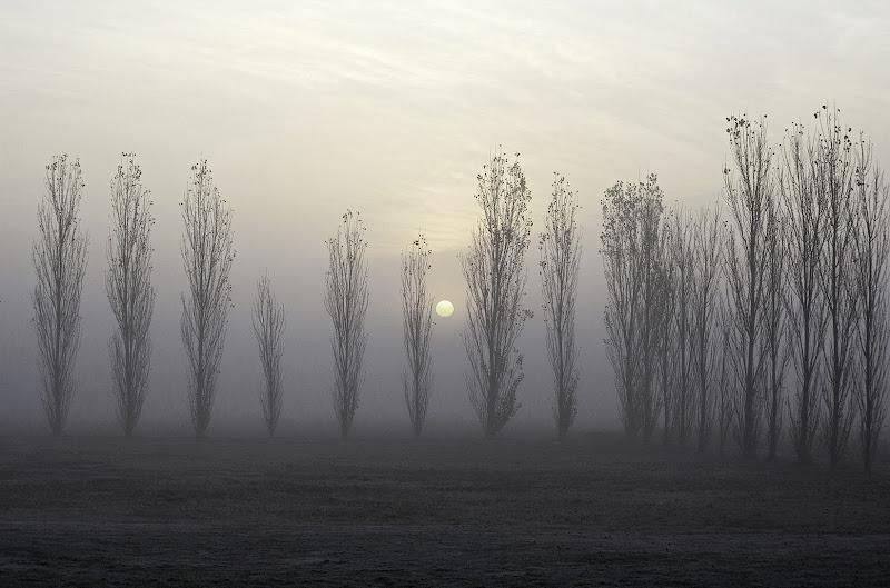 Alba sul delta del Po di FrancescoPaolo