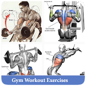 Gym Workout Exercises