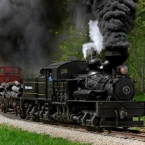 Mountain Train by Chuck  Gordon  - Transportation Trains
