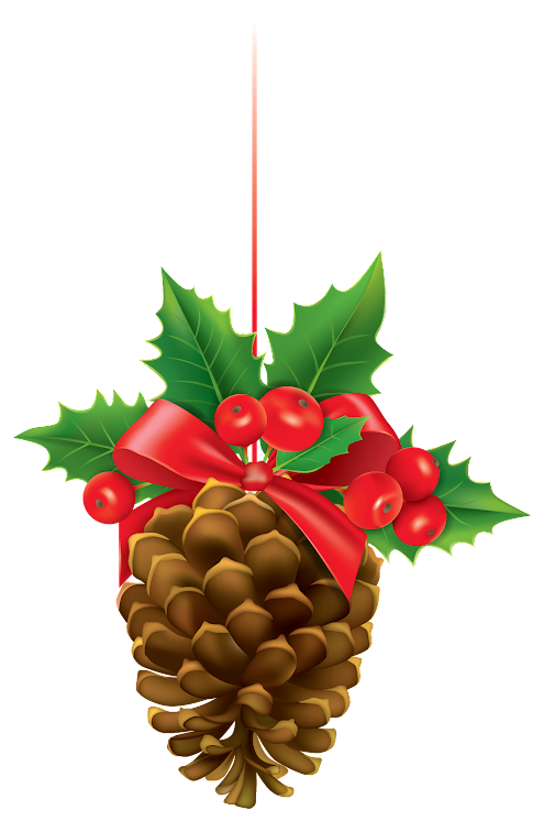 Christmas Pinecone With Mistletoe Ptq9qdqshCaSitmN6ySc