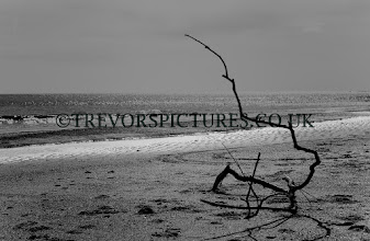 Photo: PLAYING WITH MONOCHROME