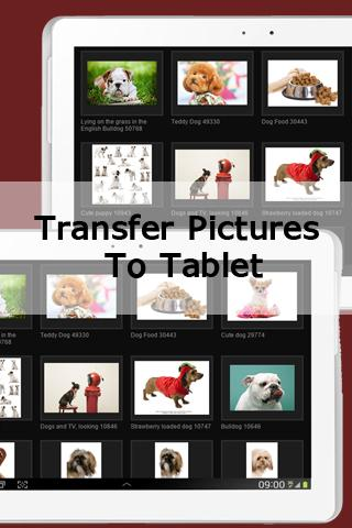 Transfer Pictures to Tablet