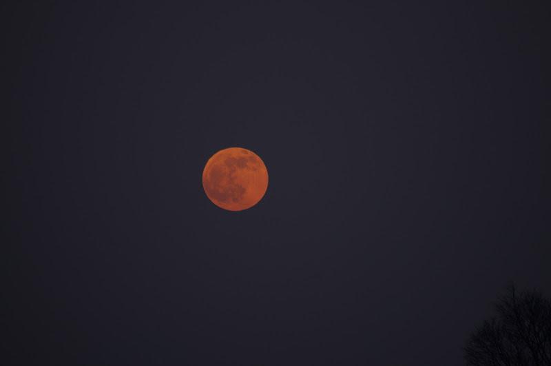 Luna Rossa di magalasspht