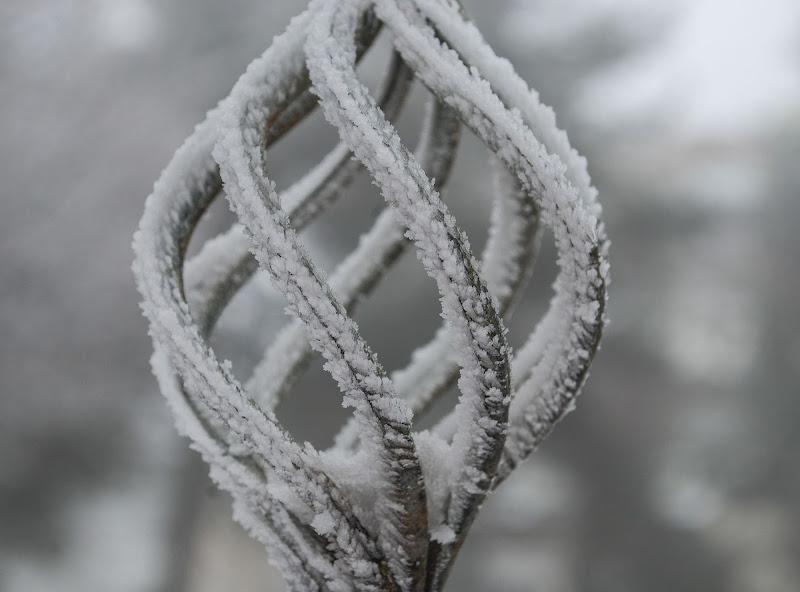 arte fredda di Zerosedici