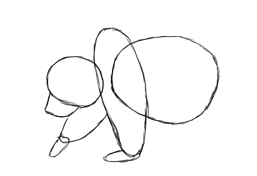 bear's arm