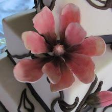 Photo: Sugar Magnolia