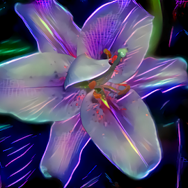 Lily neon abstract by Cassy 67 - Digital Art Things ( digital, love, harmony, abstract art, neon, photo manipulation, photoshop, abstract, lilies, digital art, flower, modern, light, lily, deep dream, photography, energy )
