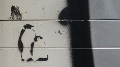 Photo: Stencil; Unkown Artist; Pinguine