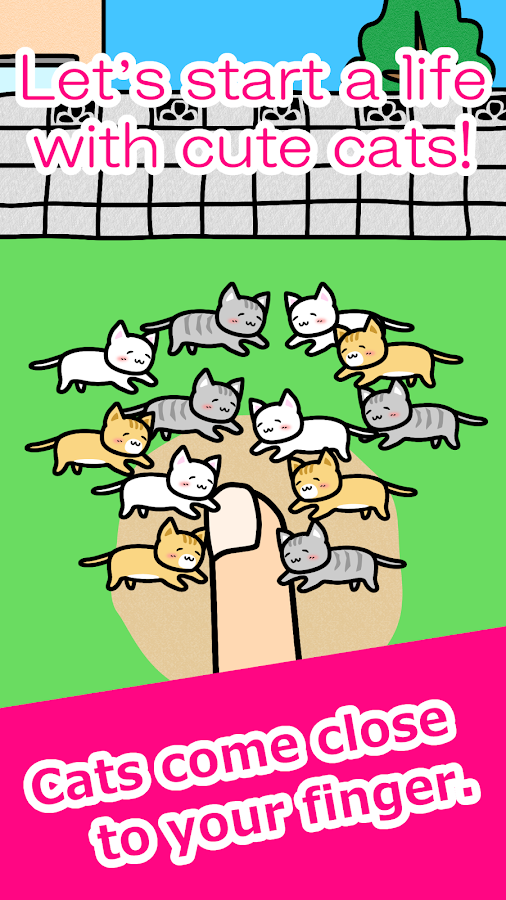 Play with Cats- screenshot