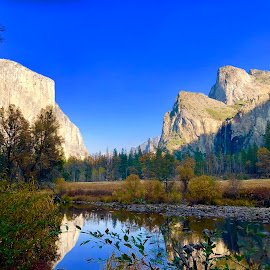 Yosemite Valley - El Capitan by Nipun Shedhani - Landscapes Prairies, Meadows & Fields