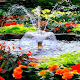 Flowers Park Fountain LWP for PC-Windows 7,8,10 and Mac
