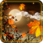 Autumn Moon live wallpaper