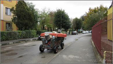 Photo: Măgărușul lui Ianoș - de pe Str. Rapsodiei - 2016.10.13