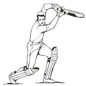 Lina Sports Cricket
