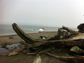 Photo: Rameur des Glaces et ossements de baleines chassées, Kaktovik Alaska