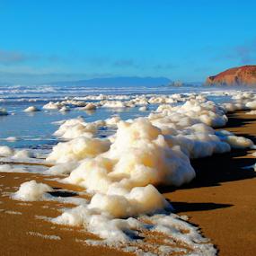 California Beach Foam by Robin Amaral - Landscapes Beaches ( beach foam, seashore, cliffs, sea foam, hdr, california, pacific ocean, algal, beach, seascape, beaches, travel location, pacifica, lifestyle, shoreline, healthy, spume, ocean view, travel photography,  )