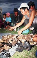 Photo: 03352 ナムジ家/ヤギ石焼料理準備/ボードック/首から下の皮を筒状に剥いだ中に解体した肉と焼石を詰めもどして、外側から火で焼く