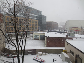Photo: Whiteout conditions along Mass Av. in Cambridge this snowy Saturday