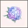 紫色の記念