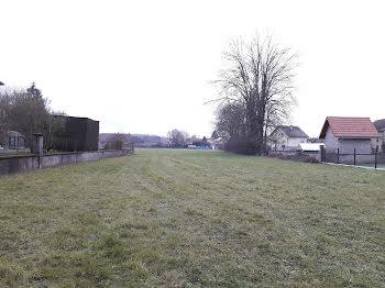 terrain à Roye (70)