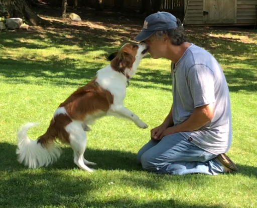 BARKS Podcast with Ken MacLeod of My Positive Pup: June 4, 2021