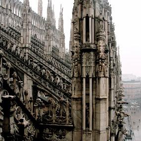 Duomo di Milano by Cristiana Chivarria - Buildings & Architecture Architectural Detail ( milan, cathedral )