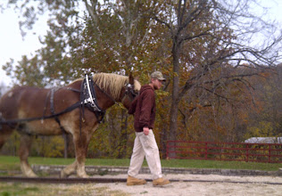 Photo: Metamora IN - leading the horse on Whitewater Canal