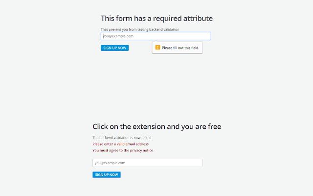 HTML5 Form validation remover