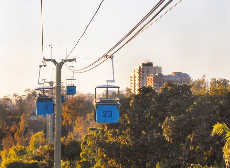 The zoo's Skyride, convenient for getting around the 100-acre venue.