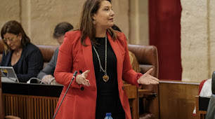 La consejera Crespo en una intervención en el Parlamento andaluz