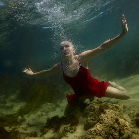 Little red dress by Brett Styles - People Street & Candids ( girl, red, underwater, sea,  )