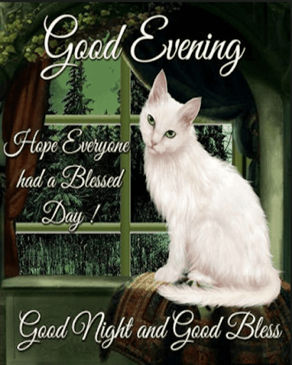 Download Good Night Wishes Blessings On Pc Mac With Appkiwi Apk