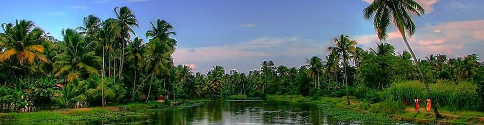 Индия пейзаж