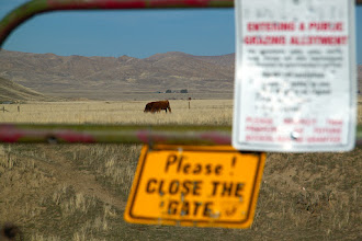 Photo: Please close the gate and please don't shoot the livestock.