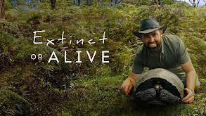 Extinct or Alive thumbnail