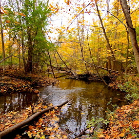 Fall by the river  by Kimberly Davidson - Landscapes Waterscapes ( michigan, fall riverscape, fall season, body of water, rivers, landscape, heritage park farmington mi., fall color,  )