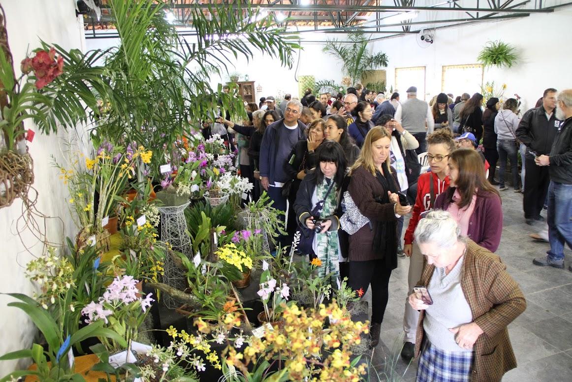 Flores, orquídeas e gastronomia reúnem 40 mil visitantes no Pq. Rizzo