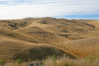 Photo: Wither Hills