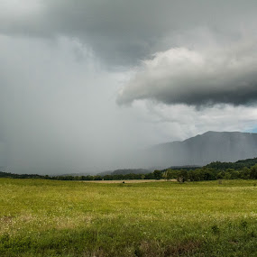 A Distant Shower by Angela Moore - Landscapes Weather ( field, clouds, mountains, cades cove, rain )