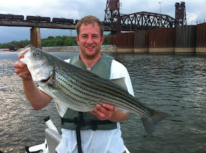 Photo: April 16, 2012 - Guide Sam Simons w/striper taken on 8 lb. test line <Eek!> We don't specifically book striper trips because it is a 'hit & miss' bite... but if the stripers are there when we're out on trips for other species, we'll sure fish 'em!