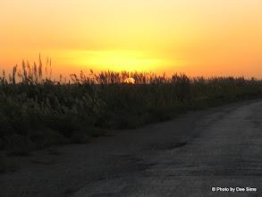 Photo: Day 159 - Sunset on the Desert Road #2
