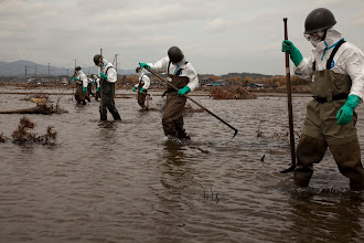 Photo: May 7, 2011. Odaka, Fukushima, Japan. SDF workers use poles to search flooded rice fields for bodies--nearly two months after the tsunami. Because of the radiation leak, this area was had not received as much attention by recovery workers compared to other regions.