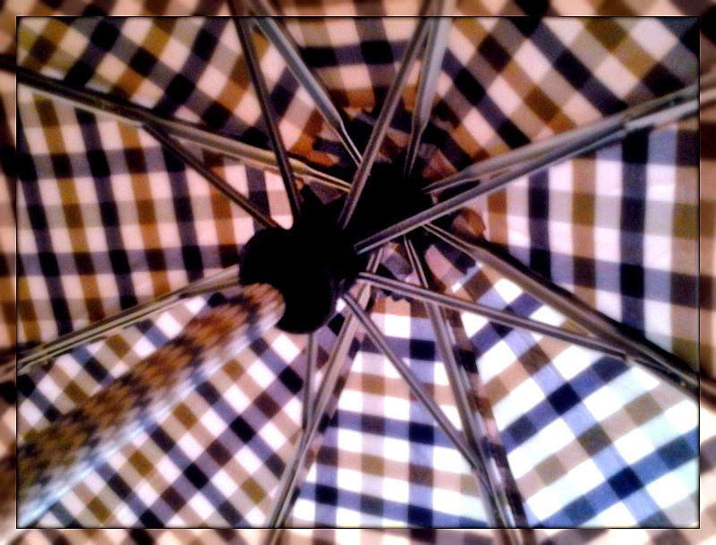 La simmetria in un ombrello di Annalisa Mauro